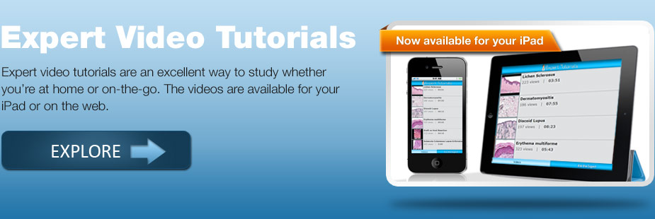 Expert Video Tutorials: Now available for your iPad